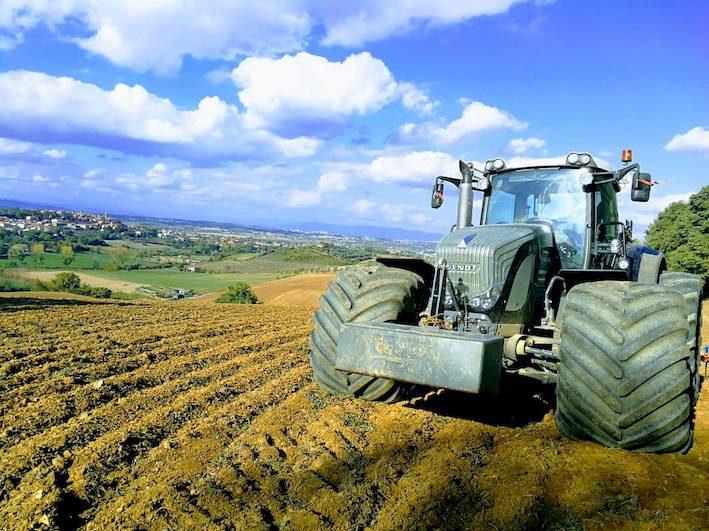 Agricoltura, via a 65 mln di contributi per la messa in sicurezza delle aziende  agricole - ItaliaOggi.it