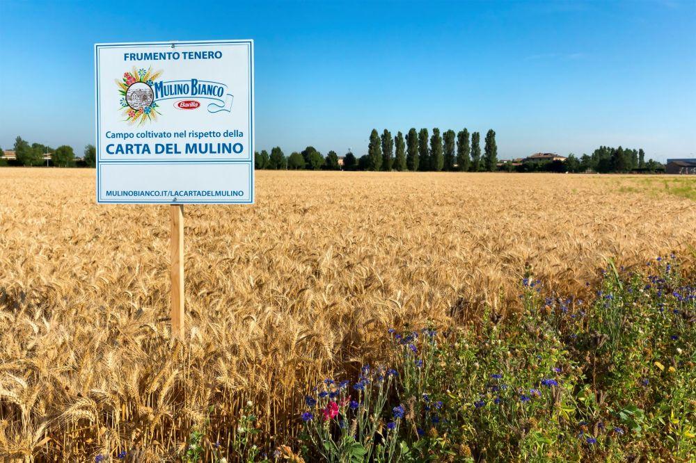 Mulino Bianco, bio e tutela delle api - ItaliaOggi.it